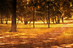 Fall, autumn park Royalty Free Stock Photography