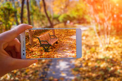 Fall,autumn photograph Royalty Free Stock Images