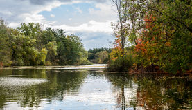 Fall Autumn Portrait Forest Pond Background stock photography