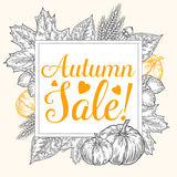 Fall autumn sale design. Autumn discount. Vector fall leaves. Vector sale poster. Hand drawn illustration with leaves, acorn, clov Stock Photos