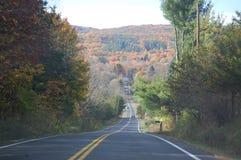 Fall-Bäume und Straße Lizenzfreies Stockbild