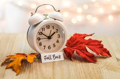Fall Back Daylight Saving Time concept on wooden board. Fall Back Daylight Saving Time concept with white clock and autumn leaves, soft bokeh background on royalty free stock image