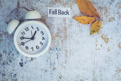 Fall Back Daylight Saving Time concept with white clock and flowers, flat lay. Fall Daylight Saving Time concept with white clock and flowers, flat lay, marble royalty free stock photography