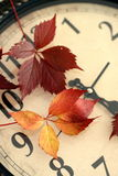 Fall Back Time Change. Time change concept. In autumn we change clock one hour back. Ageing, getting older and running out of time concept.Fall Back Time Change Royalty Free Stock Images