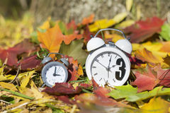 Fall Back Time Change .Vintage clock on autumn leaves background Stock Photo