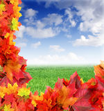 Fall background Royalty Free Stock Photo
