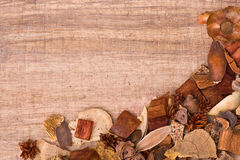Fall background. Frame from wood, bark and seeds on wooden background with copy space Royalty Free Stock Photography