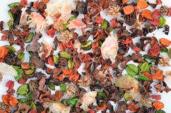 Fall background. Autumn background or backdrop with multicoloured leaves and seeds Stock Image