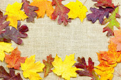 Fall background. Fall-themed background of burlap and colorful leaves Royalty Free Stock Photography