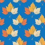 Fall background Stock Photos