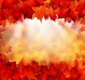 Fall Background Border with Golden Bokeh and Red Autumn Leaves Stock Photo