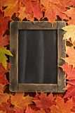 Fall background with a chalkboard stock image