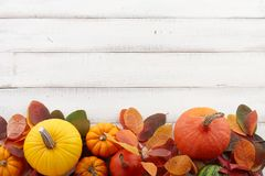 Fall background of colorful autumn pumpkins and leaves stock photo