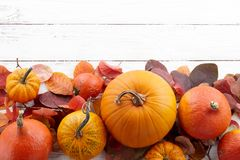Fall background of colorful autumn pumpkins and leaves Royalty Free Stock Images