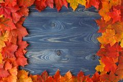 Fall background frame with maple leaves on blue Royalty Free Stock Images