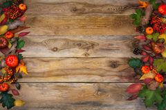 Fall background with leaves and cones on old table Stock Image