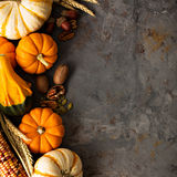 Fall background with pumpkins royalty free stock images