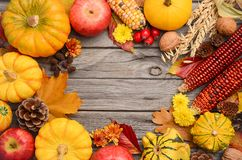 Fall background with pumpkins Stock Photography