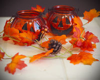 Fall background with pumpkins Stock Image