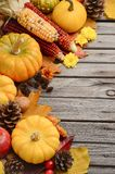 Fall background with pumpkins Royalty Free Stock Photography
