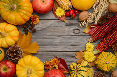Fall background with pumpkins. Top view, copy space Royalty Free Stock Photo