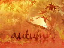 Fall background with umbrella and text Royalty Free Stock Image