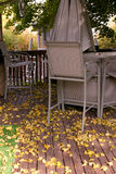 Fall in the Backyard. Leaves and the Fall in the Backyard Royalty Free Stock Photo