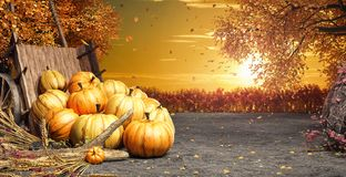 Fall in backyard with leaves falling from trees and pumpkins, autumn background stock photography