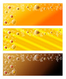 Fall Banner Set - Leaves in Bubbles Royalty Free Stock Photos
