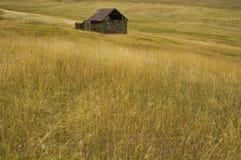 Fall Barn. Old rustic ranch barn in a high mountain meadow of Colorado Royalty Free Stock Photos