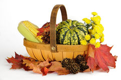 Fall Basket Royalty Free Stock Photos