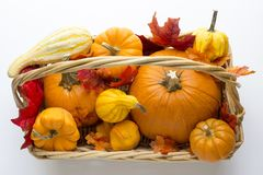 Fall basket overflowing with pumpkins, gourds & fall leaves. Bountiful fall basket overflowing with pumpkins, gourds & fall leaves Royalty Free Stock Image