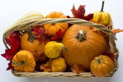 Fall basket overflowing with pumpkins, gourds & fall leaves. Bountiful fall basket overflowing with pumpkins, gourds & fall leaves Stock Photo