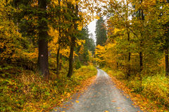 Fall in Bavaria Stock Photography
