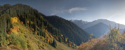 Fall in Berg Stockfoto