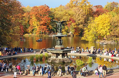 Fall At Bethesda Fountain Stock Photos