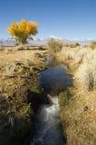 Fall-Bewässerung-Abzugsgraben Lizenzfreie Stockfotos
