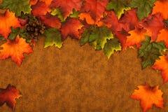 Fall-Blätter