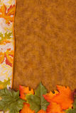 Fall-Blätter Stockfoto