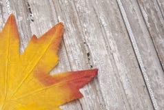 Fall-Blätter auf rustikalem Holz Stockbilder