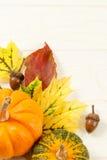 Fall-Blätter mit Kürbissen und Accorns Stockfotografie