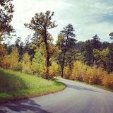 Fall. In the Black Hills Royalty Free Stock Photos