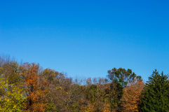Fall Blue Sky Royalty Free Stock Images