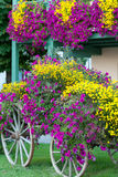 Fall-Blumen-Lastwagen-Anzeige Lizenzfreie Stockfotografie