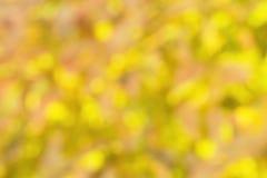 Fall Blur Royalty Free Stock Photos
