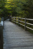 Fall Boardwalk Trail Royalty Free Stock Images