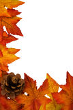 Fall Border Royalty Free Stock Photo