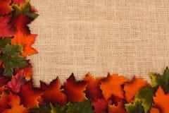 Fall Border Stock Photography