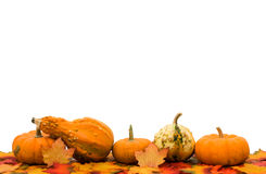 Fall Border Royalty Free Stock Image