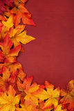 Fall Border Royalty Free Stock Photography